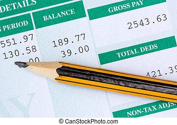 relatório, mensal, salário
