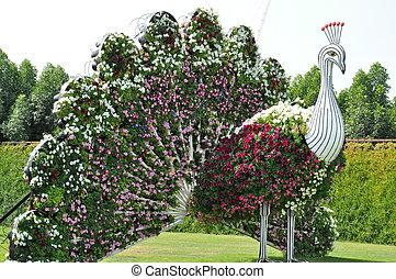 Dubai Miracle Garden in UAE