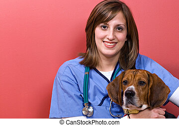 Veterinarian With a Beagle - A veterinarian posing with a...
