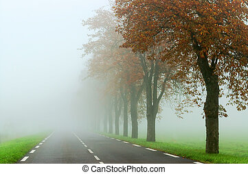 misty road - empty country road drowned in the fog