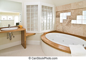 expensive bathroom with glass block and stone tile