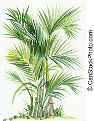 Palm bamboo tree watercolor original painting.
