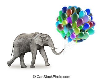Elephant with a colorful balloons isolate on a white...