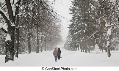 pedestrians walk on the sidewalk in a blizzard