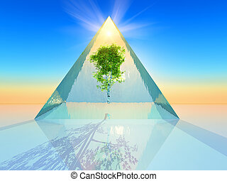 Pyramid - Tree inside a crystal pyramid
