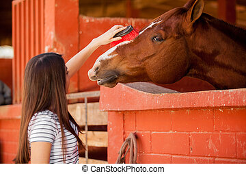 Taking care of my horse - Young equine therapy patient...