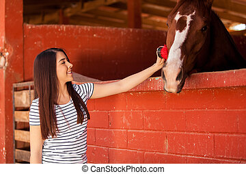 Equine Therapy in a ranch - Pretty young woman brushing and...