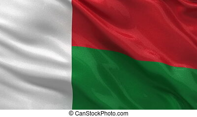 Flag of Madagascar - seamless loop - Flag of Madagascar...