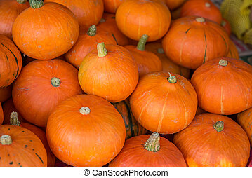 Small Orange pumpkins