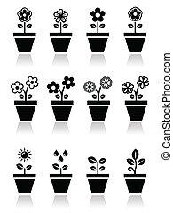 植物, ベクトル, 花, ポット, アイコン