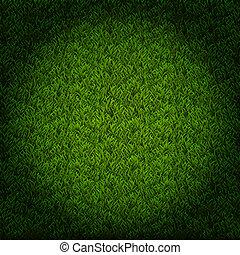 Light on the grass field