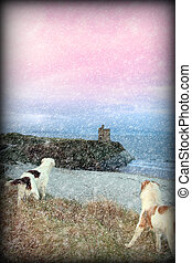 winter beach and castle view with dogs - two dogs on the...