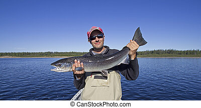catch of the day - man holding a huge atlantic salmon
