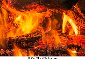 Close up of burning firewood in bonfire