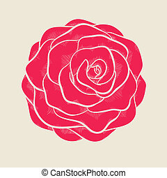 beautiful pink rose in a hand-drawn graphic style in vintage colors