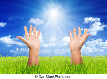 man hands in green field and blue sky with sun beam...