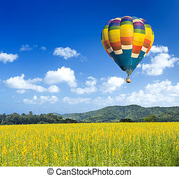 Colorful hot air balloon over yellow flower fields with blue...
