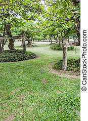 Landscape of Garden with a Freshly Mown Lawn