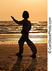 Martial art man traning in silhouette