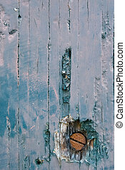 Wooden Texture - One nail in a old aged door plank