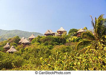 Rustic Huts in the Jungle - Rustic huts in a jungle in...