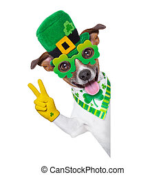 st patricks  day dog behind a blank banner