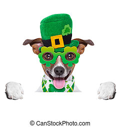 st patricks  day dog  behind blank banner