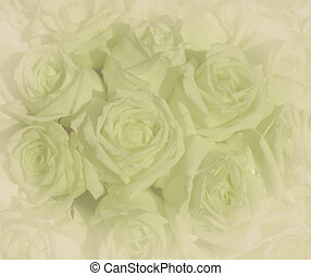 Beautiful vintage green roses background,selective focus