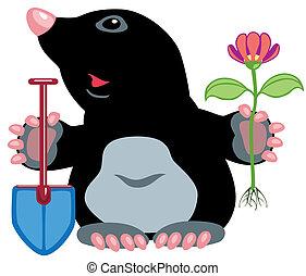 cartoon mole holding flower and shovel, image isolated on...
