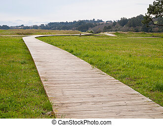 Gangway in a park in horizontal composition - Gangway in a...