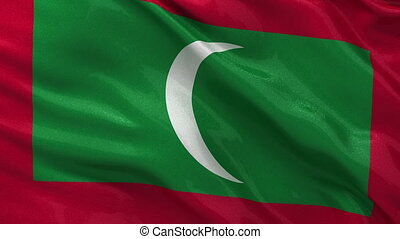 Flag of Maldives seamless loop - Flag of Maldives gently...