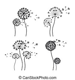 flowers design - flowers design over white background vector...