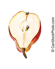 Half of red pear - Watercolor image of half of red pear on...