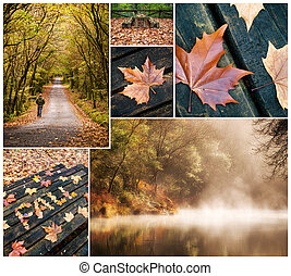 Autumnal collage of Fragas do Eume narural park in...