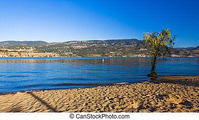 Kelowna City Beach