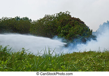 Fire fighter - firefighters reduce a fire in a forest fire...