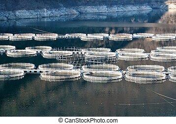 Fish farm plant on Evia island,Aegean sea,Greece.Nature and...