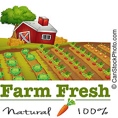 A natural label and a farm - Illustration of a natural label...