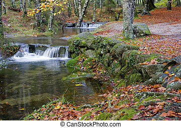 autumn - river in the portuguese national park of Geres, in...
