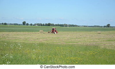 tractor ted hay field