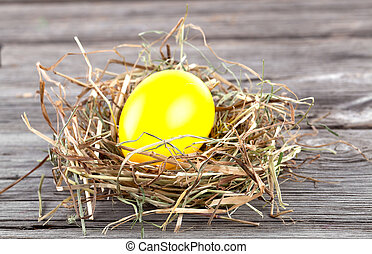 Easter Egg in a nest on wooden background