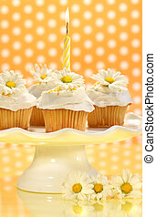 Cupcakes decorated with icing and little daisies