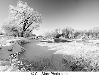 Winter river landscape - winter river and trees in winter...