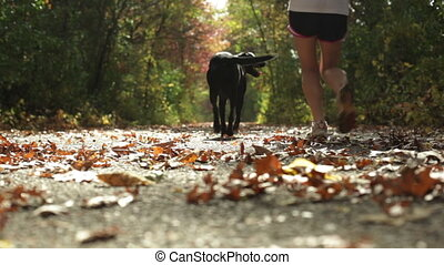 Girl jogging with dog on trail - Young girl jogging with her...