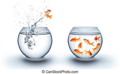 金魚, 跳躍, 在外, 水