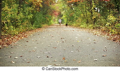 Girl jogging with dog on trail. - Young girl jogging down a...