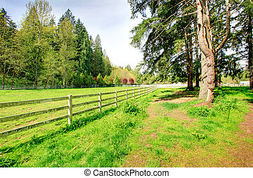 Countryside horse farm - Beautiful green country side horse...