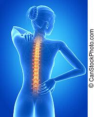 Female having backache - medical 3d illustration - female...