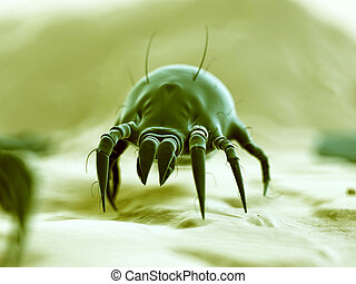 Typical dust mite - medical 3d illustration - typical dust...