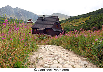 Gasienicowa Valley in Tatra Mountains, Poland
